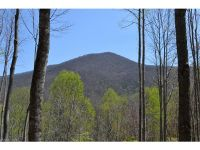 Home for sale: 1335 E. Clubhouse Rd., Sylva, NC 28779