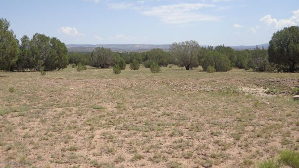 261 Juniperwood Ranch Lot 261, Ash Fork, AZ 86320 Photo 18