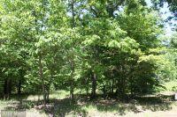 Home for sale: 3 C Paddock Wood Rd., Keswick, VA 22947