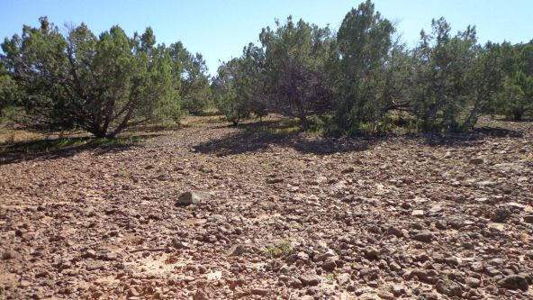 514 Westwood Ranch Lot 514, Seligman, AZ 86337 Photo 10