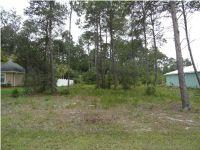 Home for sale: 124 White Blossom Trail, Port Saint Joe, FL 32456