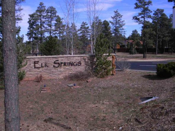 5441 E. N. Elk Springs, Lakeside, AZ 85929 Photo 2