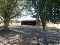 Home for sale: 11 County Rd. 317, Dawson, AL 35963