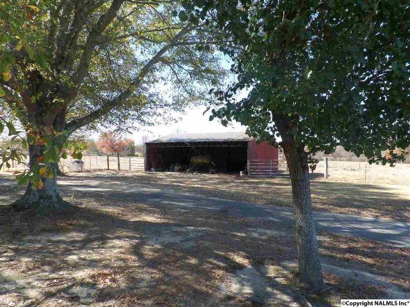11 County Rd. 317, Dawson, AL 35963 Photo 1