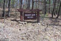 Home for sale: Beaver Dam Ln., Berkeley Springs, WV 25411