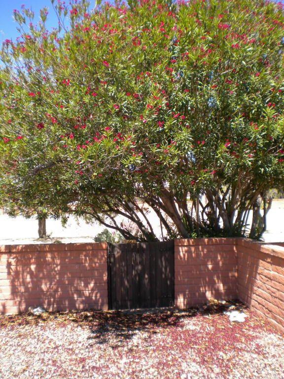 455 N. Calle del Chancero, Green Valley, AZ 85614 Photo 13