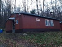 Home for sale: 8749 West Bucktooth Run Rd., Little Valley, NY 14755