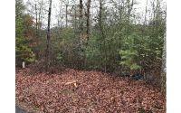 Home for sale: Lot 3 Hawks Ridge, Mineral Bluff, GA 30559