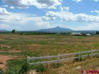 Home for sale: Tbd Rd. 24.8, Cortez, CO 81321