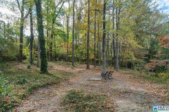 2215 Brookshire Pl., Mountain Brook, AL 35213 Photo 66