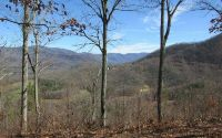 Home for sale: #32 Eagle View, Hayesville, NC 28904
