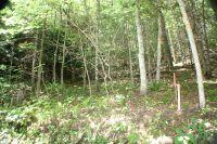 Home for sale: Lot 54 Lake Shore Dr., Nantahala, NC 28781