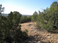 Home for sale: 0 Tremintina Rd., Arroyo Hondo, NM 87513