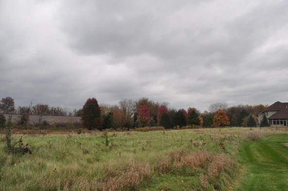 Lot 2 Savanna Lakes Dr., Elgin, IL 60124 Photo 4