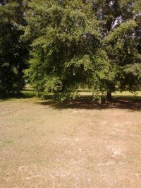 Home for sale: 1301 Pope St., Turbeville, SC 29162