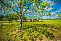 Home for sale: 92 Lee Boy Rd., Newton, AL 36352