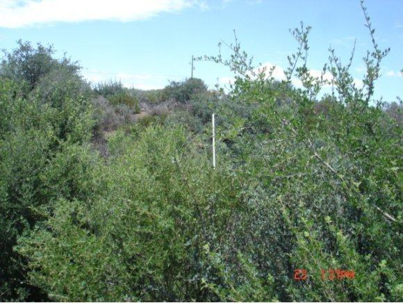 14045 E. Beverly Hills Dr., Humboldt, AZ 86329 Photo 45