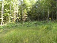 Home for sale: Lot #7 Off Cotton Rd., Lyndon, VT 05851
