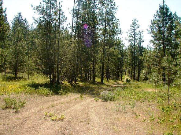 740 C Arden Butte Rd., Colville, WA 99114 Photo 12