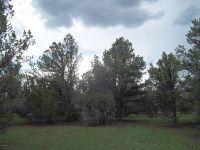 Home for sale: 184 E. Bald Eagle Ln., Williams, AZ 86046