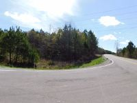 Home for sale: 14 Acres County Hwy. 42, Hamilton, AL 35570