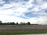 Home for sale: Parcel 1 Yates & Eagle Lake Rd., Beecher, IL 60401