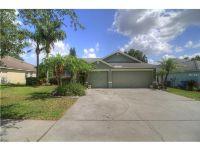 Home for sale: 2846 Duncan Tree Cir., Valrico, FL 33594