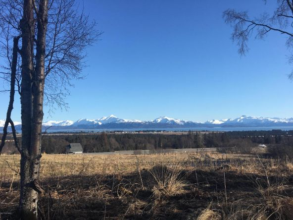4670 Hough, Homer, AK 99603 Photo 4