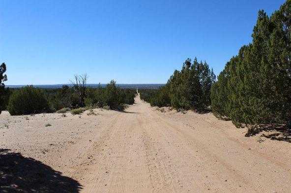 7209 N. Hwy. 191 --, Sanders, AZ 86512 Photo 16
