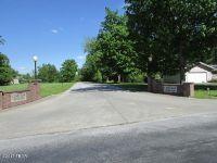 Home for sale: 44 Majestic Oak, Murphysboro, IL 62966