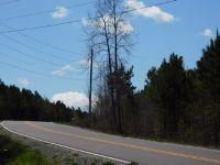 Home for sale: 12 Acres County Hwy. 42, Hamilton, AL 35570