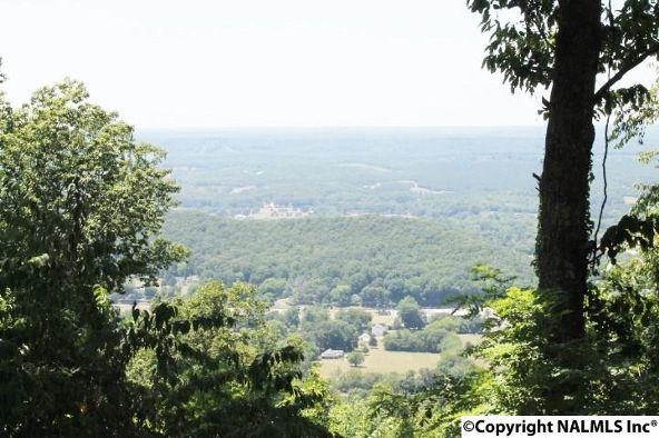 20021 County Rd. 89, Mentone, AL 35984 Photo 8