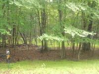 Home for sale: 272 Powderhorn Dr., Lackawaxen, PA 18435
