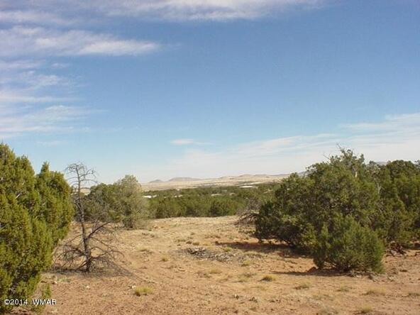 1b N. 8690, Concho, AZ 85924 Photo 19