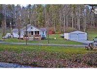 Home for sale: 328 Piney Grove Rd., Hampton, TN 37658