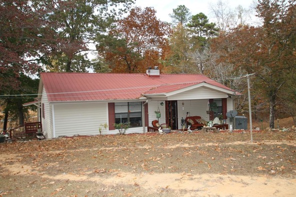 301 County Rd. 173, Crane Hill, AL 35053 Photo 15