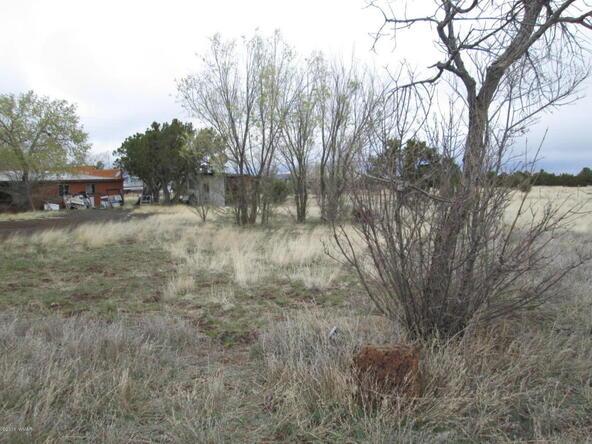 1593 Cr 3140, Vernon, AZ 85940 Photo 28