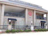 Home for sale: 129 N. Donahue Dr., Auburn, AL 36830