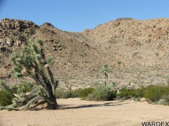 3529-C Arroyo Rd., Yucca, AZ 86438 Photo 3