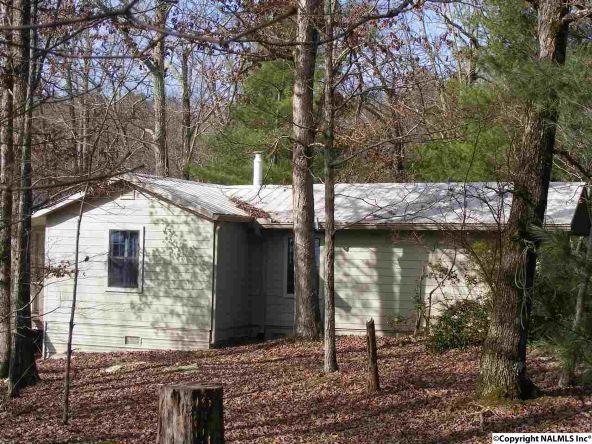 9416 County Rd. 103, Mentone, AL 35984 Photo 29