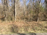 Home for sale: 000 Truman Young Rd., Hawesville, KY 42348