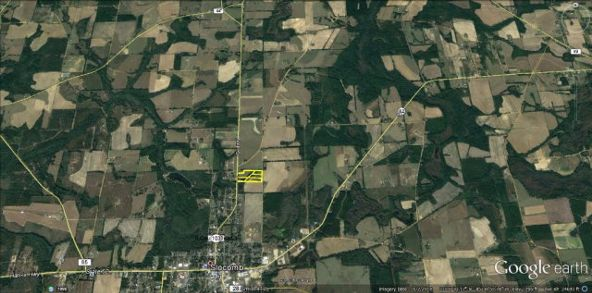5 Acres Hwy. 103, Slocomb, AL 36375 Photo 14