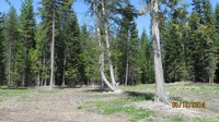 Home for sale: Lot 1 Old Hwy. 2 North, Troy, MT 59923