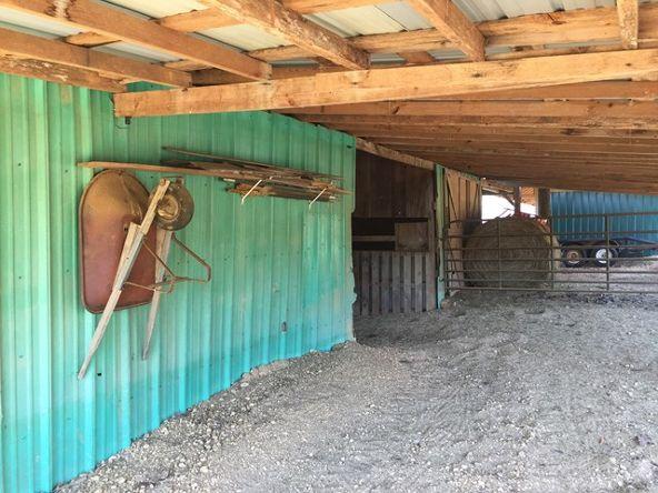 2430 Lost Creek Rd., Russellville, AL 35653 Photo 19