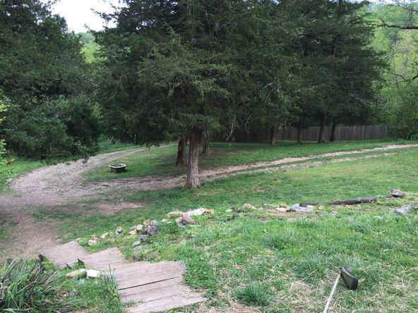 2496 County Rd. 317, Eureka Springs, AR 72632 Photo 26
