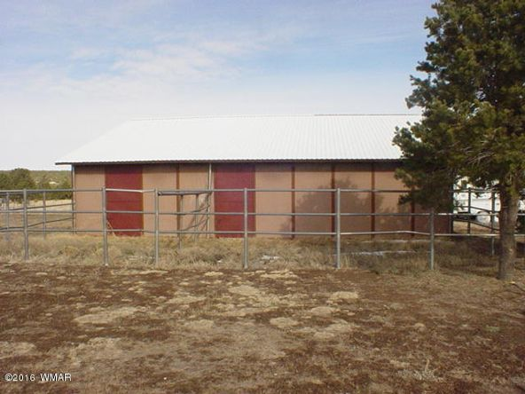 481 Apache County Rd. 3144, Vernon, AZ 85940 Photo 24