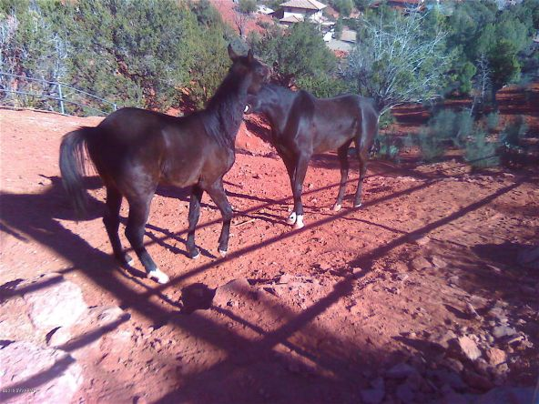 110 Cayuse, Sedona, AZ 86336 Photo 25