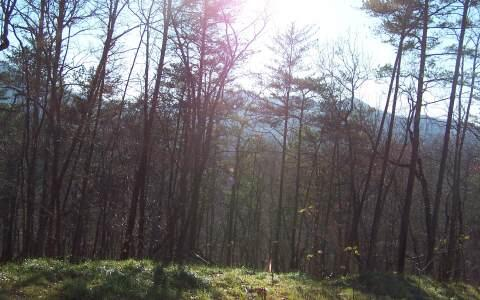 Lot 3 Trails End, Young Harris, GA 30582 Photo 2