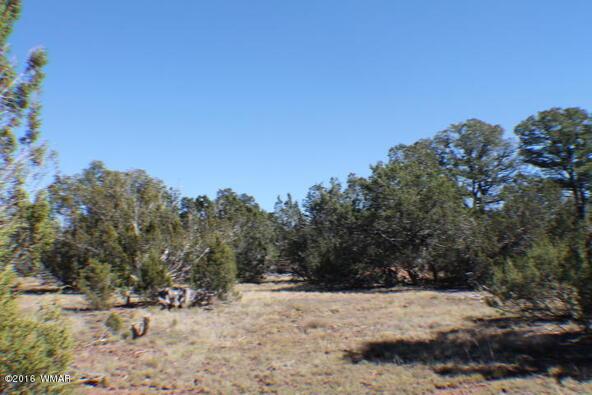 2 Acres Off Of Acr N. 3114, Vernon, AZ 85940 Photo 10