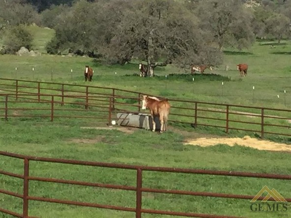 1163 Stockton Dr., Bakersfield, CA 93308 Photo 57
